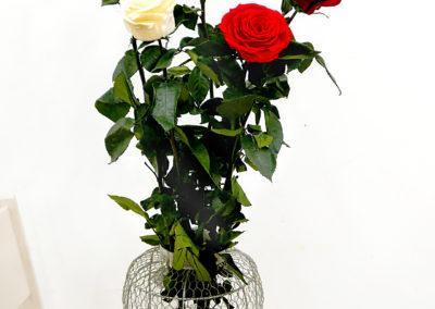 Stabiliserte blomster og dekorasjoner