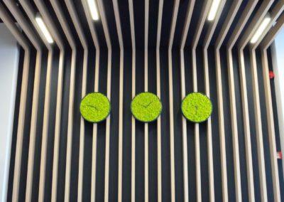 Dekor og interiørdetaljer av mose
